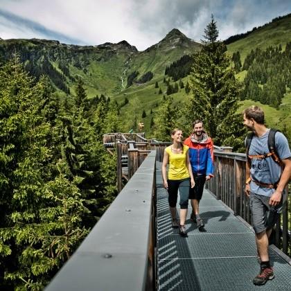 nature paradise Saalbach Hinterglemm